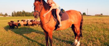 horses_112